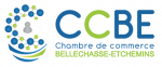 chambre-de-commerce-bellechasse-etchemin_logo_version-horizontale-02-2018-09-24-IwyqG6j4PNIG9AwGtpr5a9NN